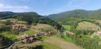 Grimmerswald mit Blick auf die Hornisgrinde